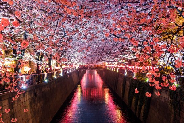 The highlights of Sapporo, Japan